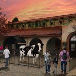 Design/Build Zoo Exhibit